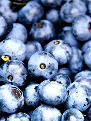 berries-quality